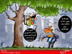فرار از ازدواج